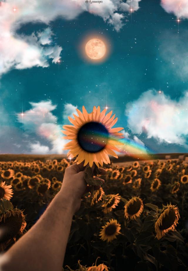 •𝖣𝗋𝖾𝖺𝗆𝗂𝗇𝗀 𝖺𝗆𝗈𝗇𝗀 𝗌𝗎𝗇𝖿𝗅𝗈𝗐𝖾𝗋𝗌•🌻☁️🌕🧡#sunflowers #rainbow #sky #moon #clouds #heaven #sunflower #glitter #shine #bright #myedit #awesome #colorful #madewithpicsart #picsartpicks #pickme #papicks #amazing #fantasy #background #galaxy #sweet #inspiration #creative @PA