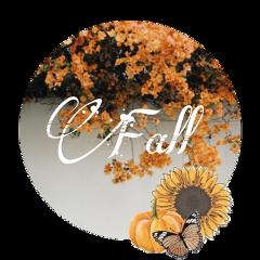 use fall flower autumnleaves autumn leafs fallleaves september pumpkin butterfly happy orange aesthetic sticker