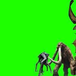 godzillakingofthemonsters godzilla mothra rodan kingghidorah behemoth scylla muto methuselah kingkong freetoedit