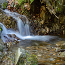 freetoedit photography nature forest falls
