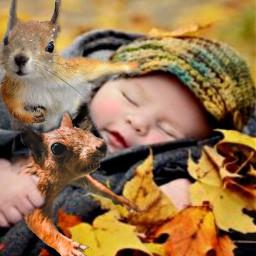 squirrels irchangtime hangtime freetoedit