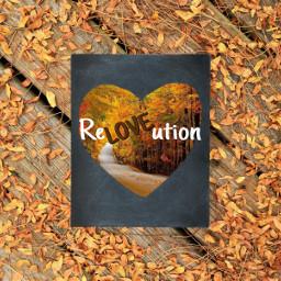 fall revolution revolutionary love loverevolution autumn autumnleaves lovepicsart helloautumn hellofall natural nofilter caretheflora ircchalkboarddesign chalkboarddesign