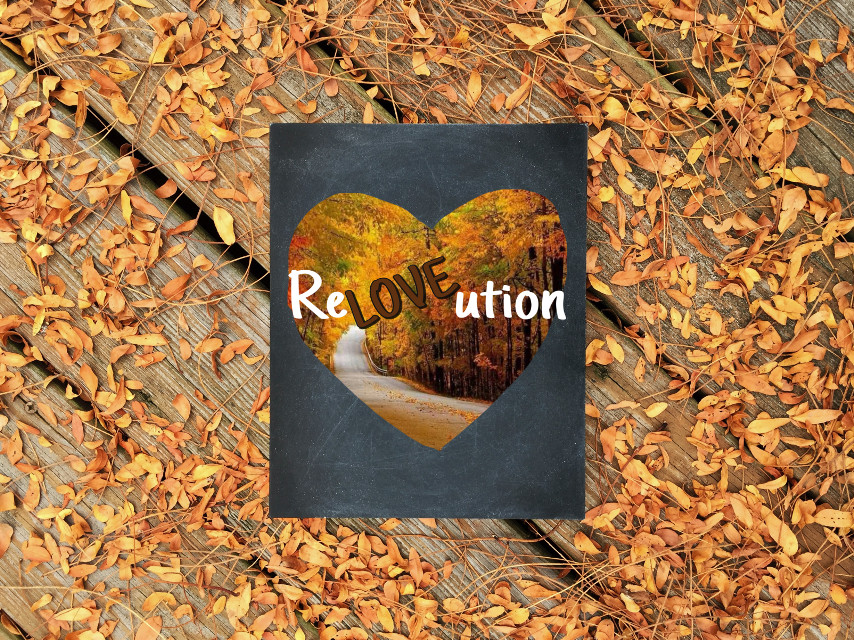 #fall #revolution #revolutionary #love #loverevolution #autumn #autumnleaves #lovepicsart #helloautumn #hellofall #natural #nofilter #caretheflora