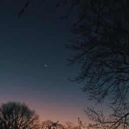 freetoedit sky night nightsky cielo noche anochecer sunset moon luna siluets trees siluetas simple nature atardecer arboles