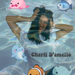 charli underwaterroyalty tag freetoedit