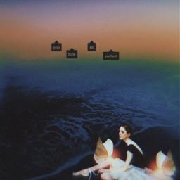 ballerina butterflies light sea