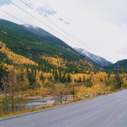 freetoedit interesting photography fall colorado nature beautiful leaves mountains road