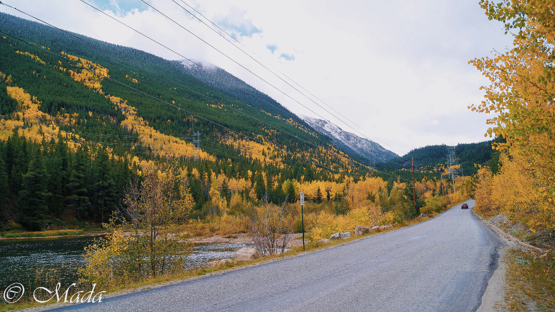 You all seemed to really enjoy my last post. So here's another one! #interesting #photography #fall #colorado #nature #beautiful #colorado #leaves #mountains #road