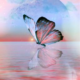 heypicsart mastershoutout butterfly sky sea myedit madewithpicsart picsarteffects hueeffect stickeroverlay freetoedit