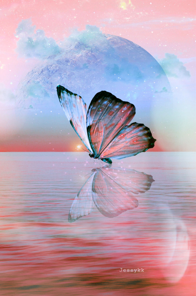 #heypicsart #mastershoutout to shoutout artist of the week @jessy_kk #butterfly #sky #sea #myedit #madewithpicsart #picsarteffects #hueeffect #stickeroverlay