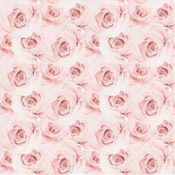 розы freetoedit