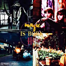 bettystyle bettylover harrypotter thegoldentrio dumbledore hagrid ronweasely hermionegranger aesthetic leaving ibfs jointaglist gainpost followme hogwarts magic always abba lcvelyicons freetoedit remixit love beyourself