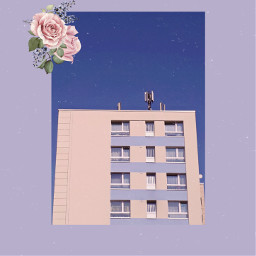 blue aesthetic vhs building rose sky purple freetoedit