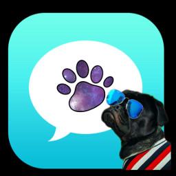 whatsapp whatsup dog fashiondog freetoedit rchomescreencustomization homescreencustomization