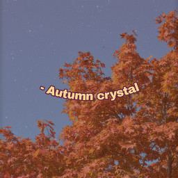 aesthetic vhs warm red orange autumn crystal freetoedit