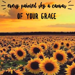 freetoedit paintedsky canvas grace sunflowers coverphoto sunset sunrise nature sowilli hillsong