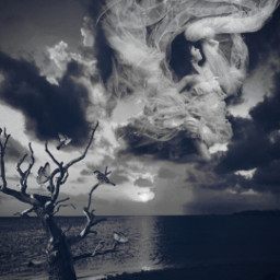 freetoedit picsart remixed remixit myedit photoedit photomanipulation digitalart digitaledit madewithpicsart editedbyme editedwithpicsart surrealism magic fantasy stayinspired picsarteffects unsplash pexels shutterstock pastickers woman clouds tree bird