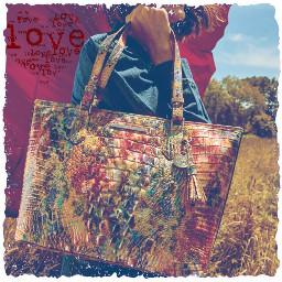 freetoedit handbag