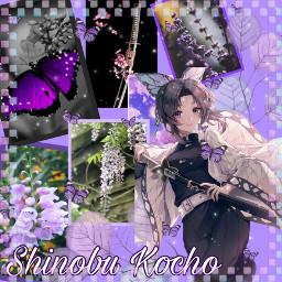 shinobukochou freetoedit