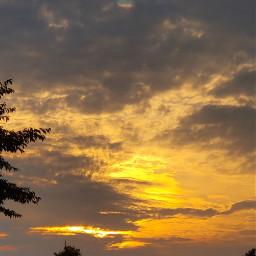 golden_hour freetoedit pcgoldenhour goldenhour