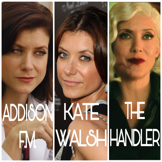 A few of Kate Walsh's roles. Left to right- Addison Forbes Montgomery from Grey's Anatomy, Kate Walsh, from real life, The Handler from The Umbrella Academy. :) #collage #theumbrellaacademy #katewalsh #addisonmontgomery #thehandler #greysanatomy