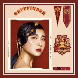 gryffindor gryffindoraesthetic griffindor griffendor harrypotter harrypotteredit art interesting red yellow lion hogwarts hogwartshouses hp freetoedit
