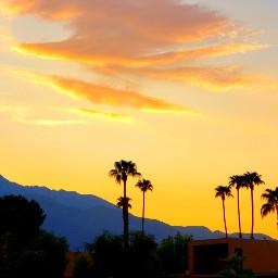 sunset palmtrees golden clouds mountian california myoriginalphoto freetoedit pcgoldenhour goldenhour