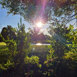 freetoedit remixit remixme landscape nature autumn fall
