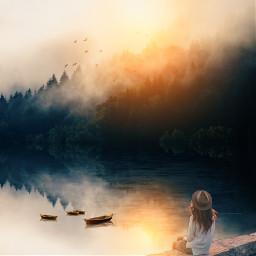 reflection forest sunny sun freetoedit
