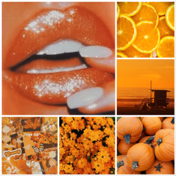 orange aesthetic collage ccorangeaesthetic orangeaesthetic freetoedit