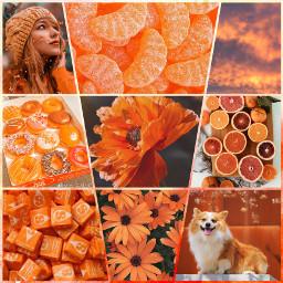 orange aesthetic pleasing pretty voted freetoedit ccorangeaesthetic orangeaesthetic