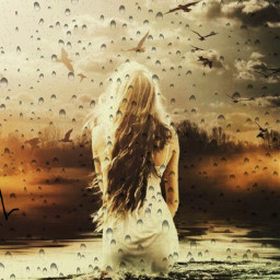 beach birds rain srcrainonme rainonme freetoedit