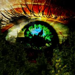 kinora myremix myedit wolve howling howlingwolve madewithpicsart lovepicsart picsart freetoedit