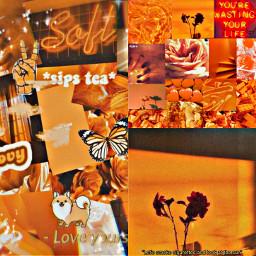 orange hallowen fall color vintage aesthetic viral famous trending trend zoe avani charli addison loren crown heartcrown emojicrown follow freetoedit ccorangeaesthetic orangeaesthetic