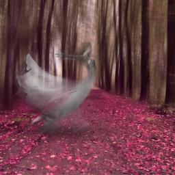 freetoedit heypicsart fantasy magical surreal