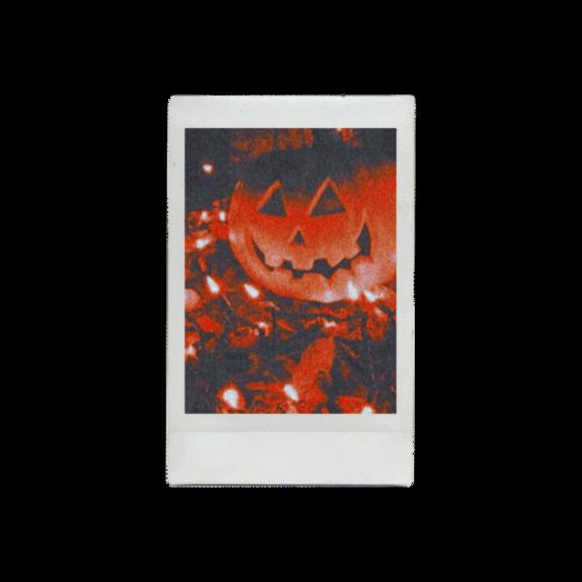 #october #fall #fallaesthetic #orange #red #leaf #falllights #fallleaves #halloween #jackolantern #spooky #spookyseason #pumpkin #fall #fallpolaroid #polaroid