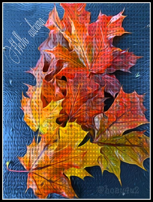 #autumn #autumncolors #myphoto #picsartediting #octobervibes