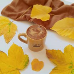 autumn autumnleaves