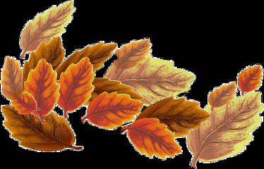 myart paintedbyme fall leaves border season dryleaves orange garland wild october thanksgiving halloween sticker byme cxll freetoedit
