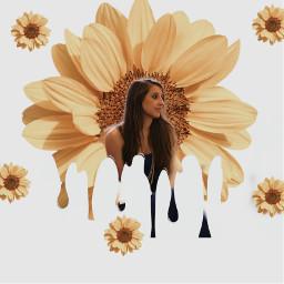 sunflower child navy fall drip love freetoedit