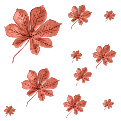 freetoedit leaf leaves leafs aesthetic autumn brown sticker pencil brush cute lovely try fall create overlay background simple october september fallleaves bronze vintage vogue