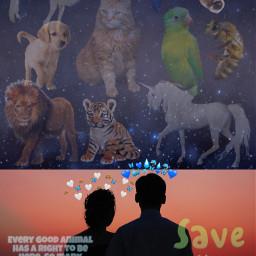 savetheanimals animallivesmatter stophurtingandstarthelping freetoedit