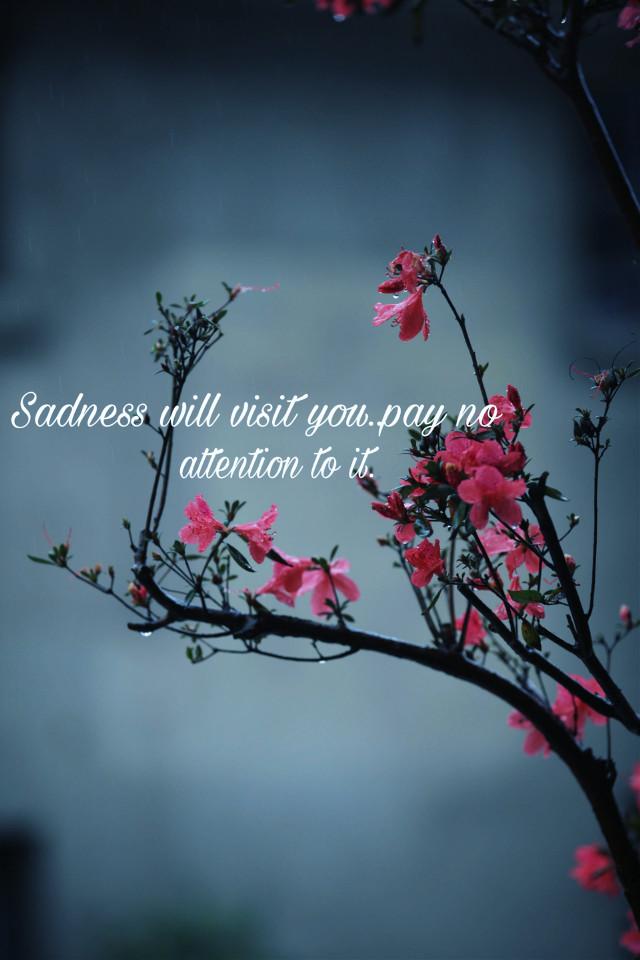 #freetoedit #quote #quotes #sadquote #sadness
