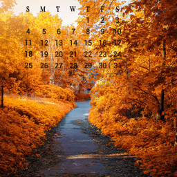 photography morningwalks srcoctobercalendar octobercalendar freetoedit