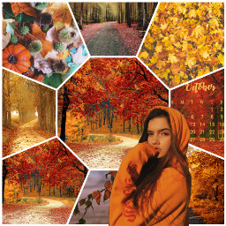 cute fall voteformeplease ccorangeaesthetic orangeaesthetic freetoedit