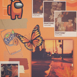 anoungus orange aesthetic competition ccorangeaesthetic orangeaesthetic freetoedit