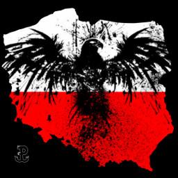 poland polska polishgirl polishgirls polishboy polishman picsart picsartedit picoftheday freetoedit edit eagle