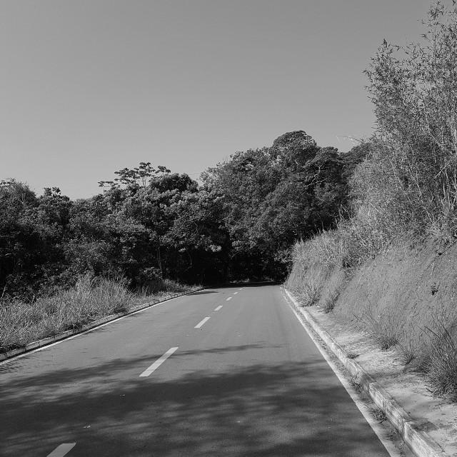 https://youtu.be/RL3Fnm1fc4Q  A ventania que passa, por vezes, tem apenas o propósito de limpar a estrada à sua frente... (JLAmaral)  #SimplesAssim #UmaFotoUmPoema #FotoPoema #FotografandoPorAi #Fotografia #ColecionandoMomentos #Fotografando&Trilhando #pcblack&whitenature #black&whitenature