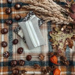 handmade herbst fall autumn sewn pcautumnflatlay autumnflatlay