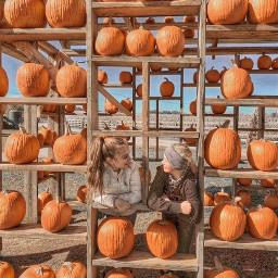 fall pcautumnflatlay autumnflatlay